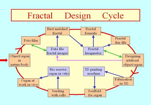 fractal generation procedure